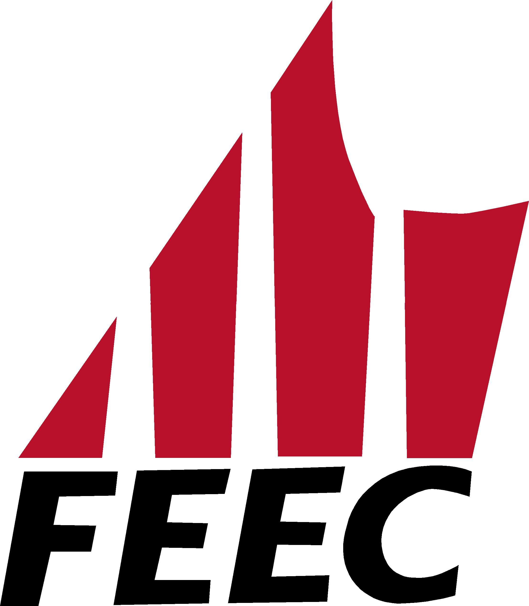 Eleccions a la FEEC